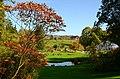 Botanischer Garten der Universität 2012-10-20 14-33-08.JPG