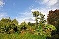 Botanischer Garten der Universität Zürich 2010-08-24 18-29-56.JPG