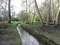 Bournemouth Gardens, stream among trees - geograph.org.uk - 658913.jpg
