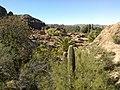 Boyce Thompson Arboretum, Superior, Arizona - panoramio (8).jpg