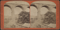 Branch of D. and H.C. Co.'s R.R. under Strucca Viaduct, by E. & H.T. Anthony (Firm).png
