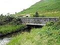Bridge over Afon Castell - geograph.org.uk - 1389656.jpg