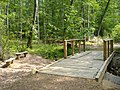 Bridge over forest creek - panoramio.jpg