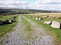Bridleway, to Dartmeet - geograph.org.uk - 1531306.jpg
