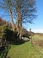 Bridleway to Colwyn Heights - geograph.org.uk - 1147857.jpg