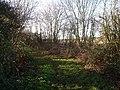 Bridleway towards Moat farm - geograph.org.uk - 93054.jpg