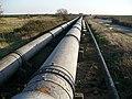 British Steel pipeline, Caldicot Level - geograph.org.uk - 689097.jpg