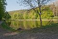 Brno-Jehnice - rybník U Lesa od jihozápadu.jpg