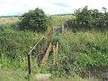 Broken footbridge - geograph.org.uk - 893368.jpg