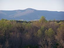 Bull Mountain.jpg