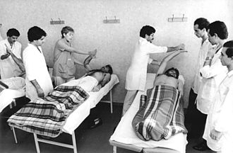 Physical therapy education - Physical therapy education in the 1980s