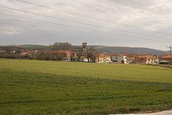 Vido de Buniel, 2010