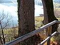 Burg Hopfen - panoramio.jpg