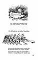 Busch Werke v1 p 103.jpg