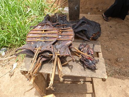 Bushmeat being prepared for cooking in Ghana. In Africa, wild animals including fruit bats are hunted for food and are referred to as bushmeat. In equatorial Africa, human consumption of bushmeat has been linked to animal-to-human transmission of diseases, including Ebola. Bushmeat - Buschfleisch Ghana.JPG