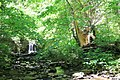 ButterMilk Falls Home of Mr. Rodgers - panoramio (45).jpg