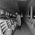 CNRZ porcheries expérimentales années 60-15-cliche Jean Joseph Weber.jpg