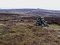 Cairn on Emblehope Moor - geograph.org.uk - 1185581.jpg