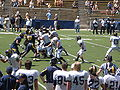 Cal football final spring scrimmage 2009-04-18 3.JPG