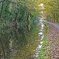 Calder and Hebble Navigation (15619784069).jpg