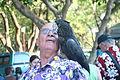 Calyptorhynchus banksii -Mindil Beach Market-8a.jpg