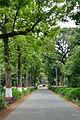 Campus Road - Bengal Engineering and Science University - Sibpur - Howrah 2013-06-08 9318.JPG