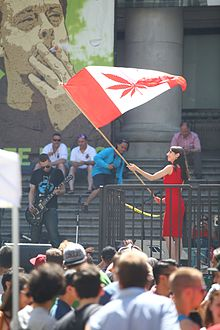 Canada - Cannabis Day, Marijuana Party 2014 @ Art Gallery (14576849173).jpg
