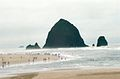 Cannon Beach, OR, USA - panoramio.jpg