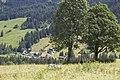 Canton de Schwytz - panoramio (26).jpg