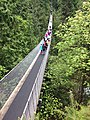 Capilano Suspension Bridge - panoramio (1).jpg