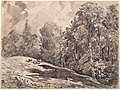 Carl Wagner, A Meadow with a Shepherd and Goats at the Edge of a Forest, 1861, NGA 155693.jpg