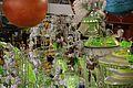 Carnival of Rio de Janeiro 2014 (12957070915).jpg