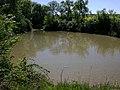 Carp pond near Berryfield Farm - geograph.org.uk - 1873783.jpg