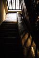 Casa de los X (escalera nave trasera).jpg