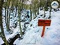 Cascada Nahiara Invierno.jpg