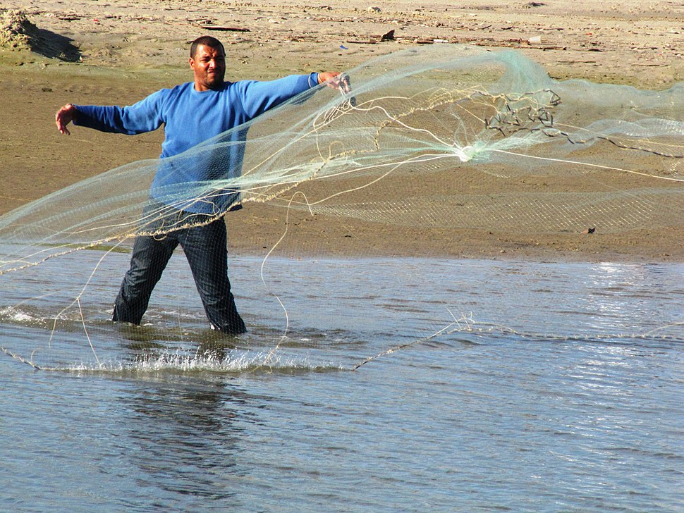 Casting a net 008a
