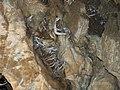 Cave - panoramio (2).jpg