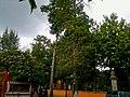 Centro, Tlaxcala de Xicohténcatl, Tlax., Mexico - panoramio (44).jpg