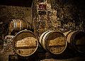 Chai de vieillissement - Saint Emilion - France - Château La Rose Brisson - Vin rouge blanc - Red white Wine - French Francais (13912949930).jpg