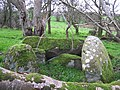 Chambered grave at Cloghfin - geograph.org.uk - 75621.jpg