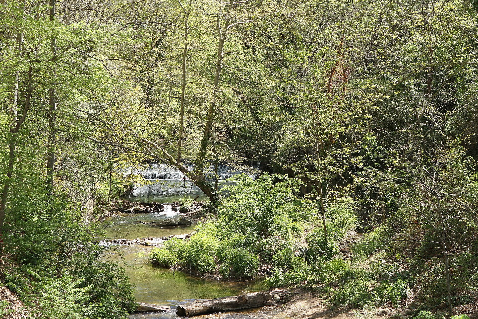 Touloubre wikip dia - Plantes bassin de lagunage aixen provence ...