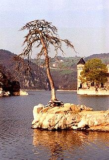 cantal-rencontre com männedorf