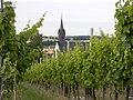 Church among vines - panoramio.jpg