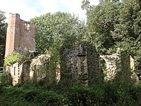 Church of St Mary (ruin) North of Birch Hall.JPG