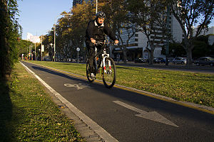 EcoBici (Buenos Aires) - A cycle lane in the city.