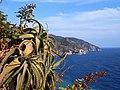 Cinque Terre Vista da Corniglia.jpg