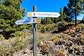 Circular Chinyero loop trail on Tenerife, Spain (48225264502).jpg