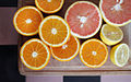 Citrus fruits (8423568980).jpg