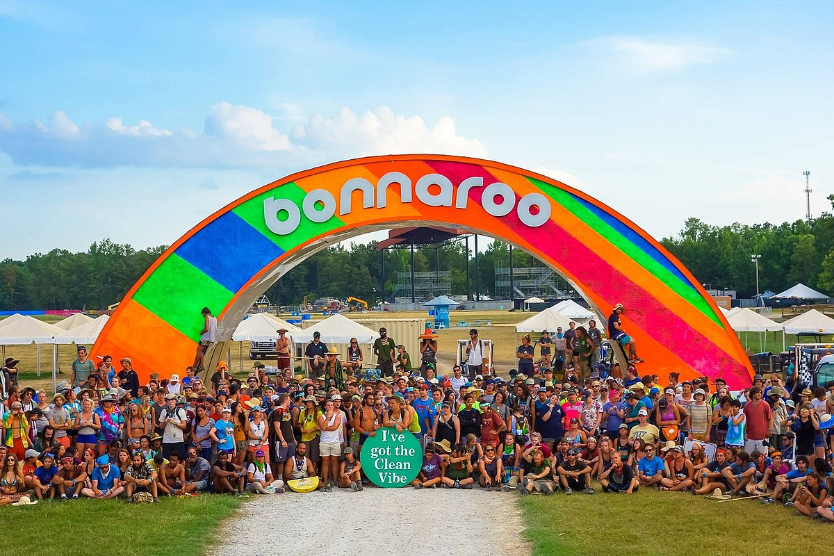 Image result for Bonnaroo music festival photos""