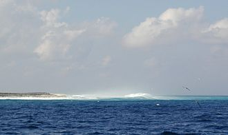 Clipperton Island - Surf on Clipperton Island